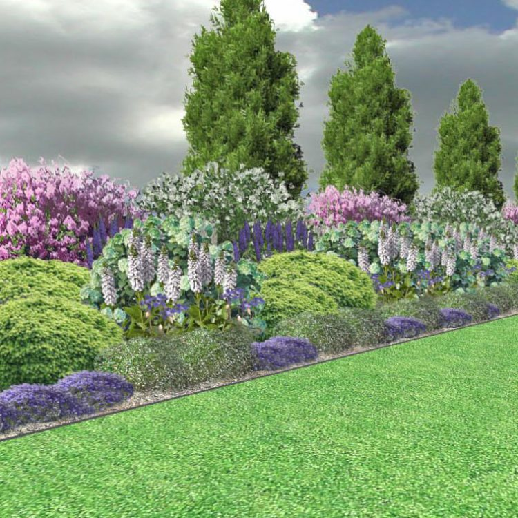 NP2 Rabata parkowa z kwitnącymi krzewami