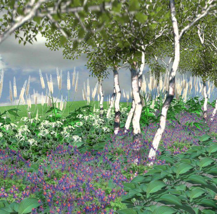 NP4 Rabata parkowa z brzozami
