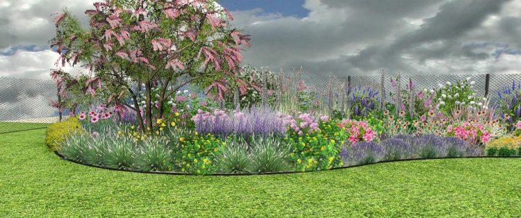 RP1 Rabata długo kwitnąca, na gleby lekkie
